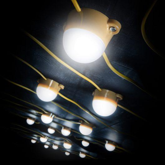 This image shows Defender 50M LED festoon lights